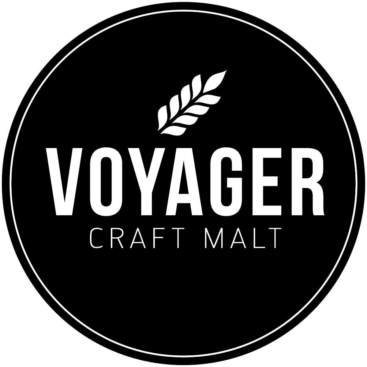 Voyager Winter Wheat